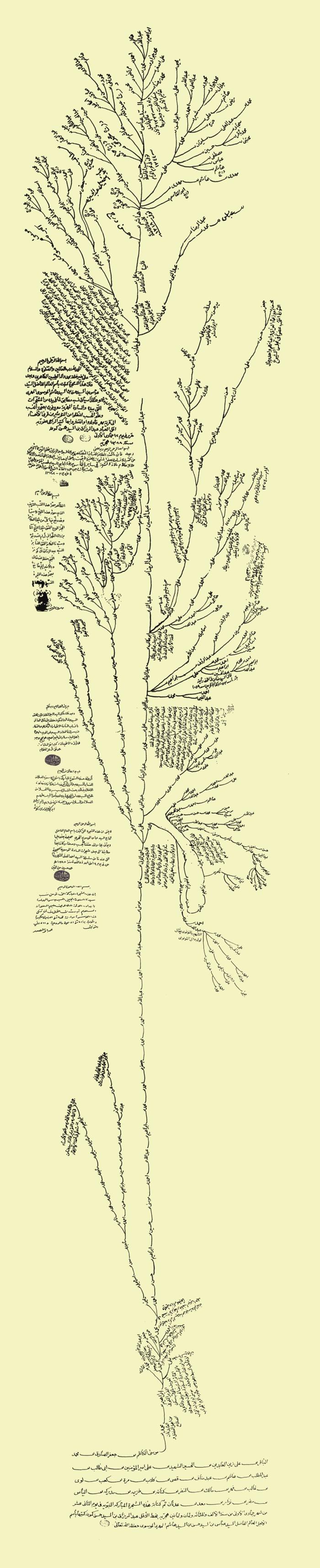 الشجرة المباركة
